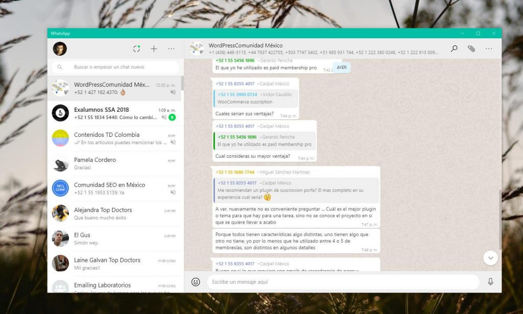 3.-WhatsApp Desktop